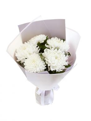 Букет из 5 белых хризантем